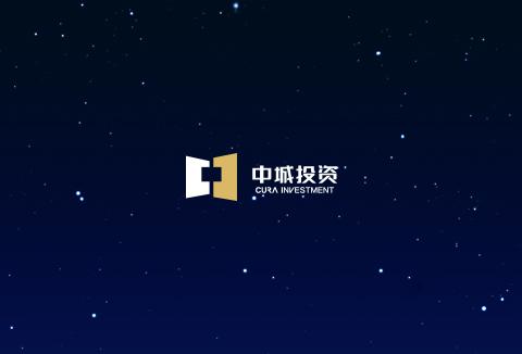 中城品牌官网设计