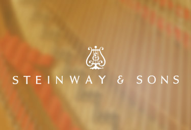 施坦威殿堂级钢琴官网设计